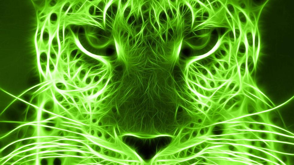 green-wallpaper-29